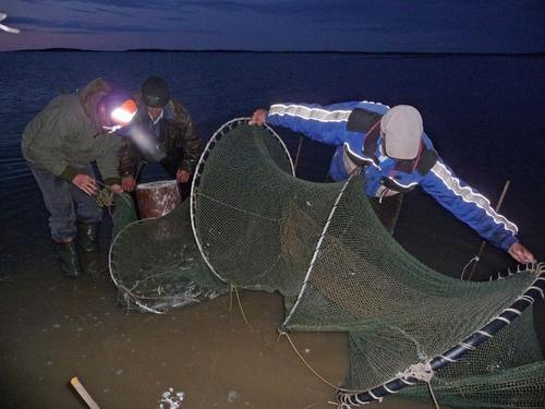 специально оборудованный для ловли рыбы закидным неводом